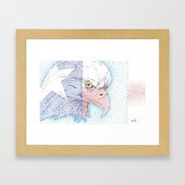 Lone star eagle Framed Art Print