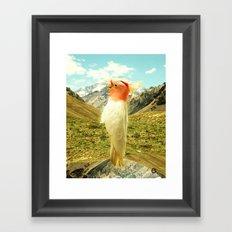 Parrot Mountain Framed Art Print