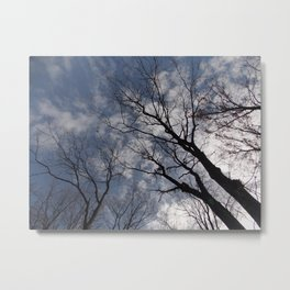 Trees in the sky Metal Print