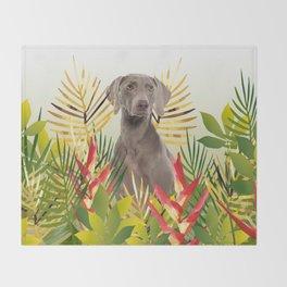 Weimaraner Dog in garden Throw Blanket
