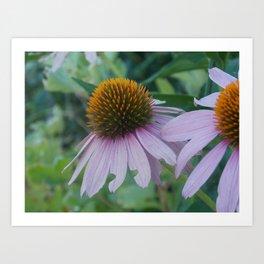 Favorite Flowers Art Print