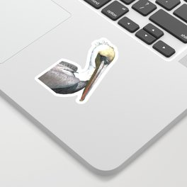 Pelican Portrait Sticker