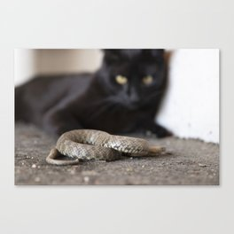 In the Shadow of the Snake Canvas Print