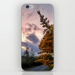 Look from a different angle iPhone Skin