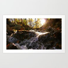 'Autumn Stream' Art Print
