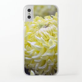 Longwood Gardens Autumn Series 283 Clear iPhone Case