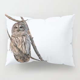 Barred Owl visitor on New Years Eve Pillow Sham