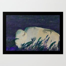 """Bearded Bull"" Art Print"