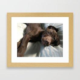 Henry, The Great Framed Art Print