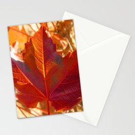 maple leaf. Autumn in Zamora. Spain Stationery Cards