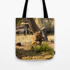 Monkey Business II Tote Bag