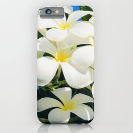 Tropical Exotic Fragrant Plumerias From Happy Hawaiian Islands iPhone Case