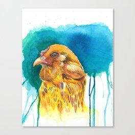 Arucana Blues Canvas Print