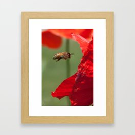 The Levitating Bee Framed Art Print