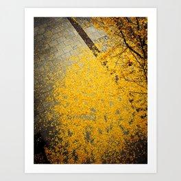 Ginkgo Fallen Art Print