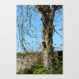 Birdbox Canvas Print