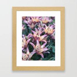 Flowers in Kentucky Framed Art Print