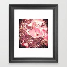 Late Summer Flowers Framed Art Print
