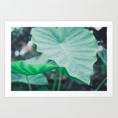 Paradise 04 Art Print
