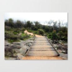 Path over lava Creek Canvas Print