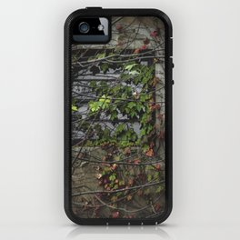 Vines Over a Window iPhone Case