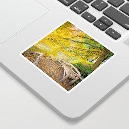 Autumn Bench Meadow Sticker
