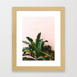 #tropical #leaf Framed Art Print