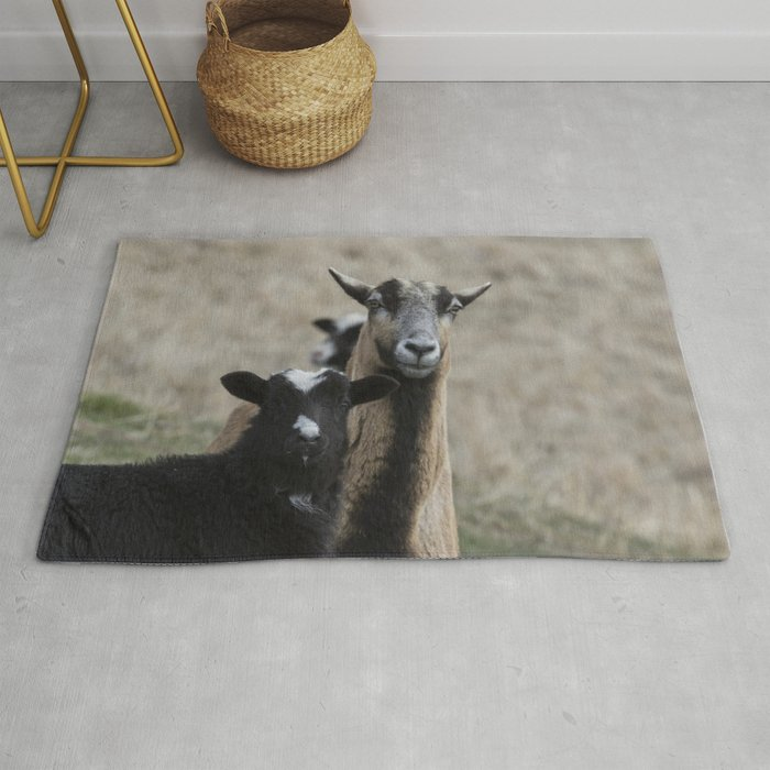 Black Goat and Barbados Blackbelly Sheep, No  1 Rug by belindagreb