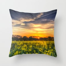 April Afternoon Field Throw Pillow