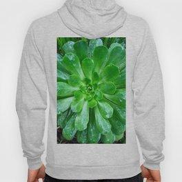 Giant succulent flower Hoody