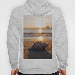 Seashore Seashell Hoody