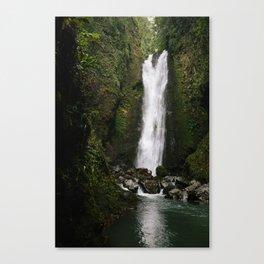 Adventure Falls Canvas Print