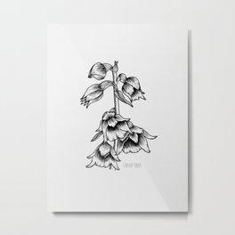 Helleborine (Orchid) Metal Print