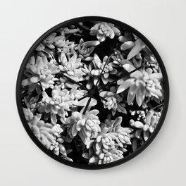 Succulent circle Wall Clock