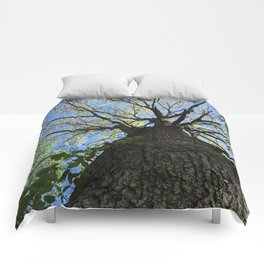 Forest Therapy Comforters