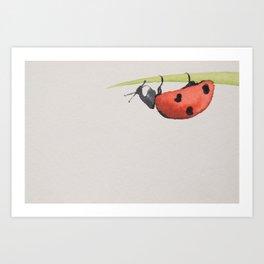 Ladybird under a blade of grass Art Print