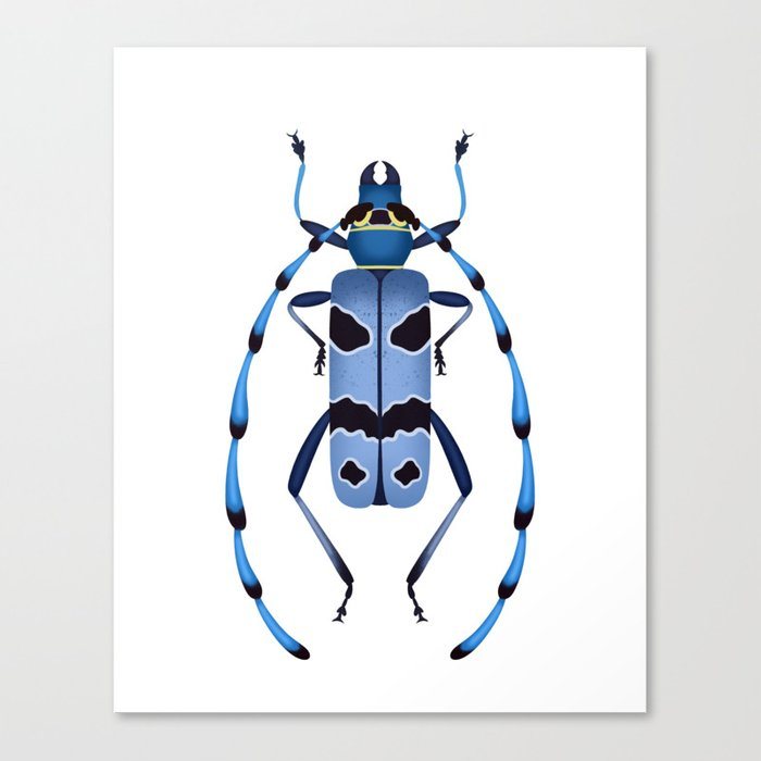 Alpine Longhorn Canvas Print