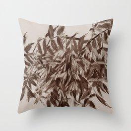 Ash-tree, sepia Throw Pillow