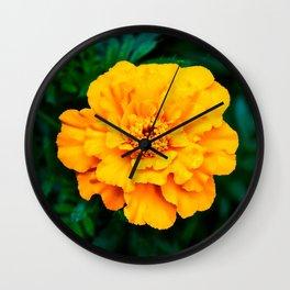 Tangerine Beauty Wall Clock
