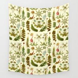 Ernst Haeckel - Hepaticae Wall Tapestry