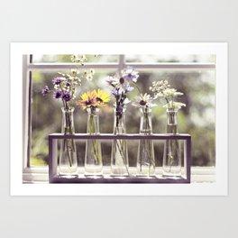 Windowsill Flowers Art Print