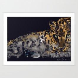 Leopard resting Art Print