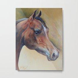 Arabian Horse portrait Brown horse head Oil painting Metal Print