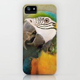Portrait of a Parrot iPhone Case