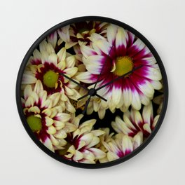 Multi color daisies! Wall Clock