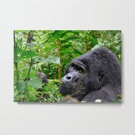 Snacking Gorilla Metal Print
