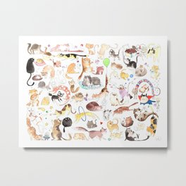 A cat mess Metal Print