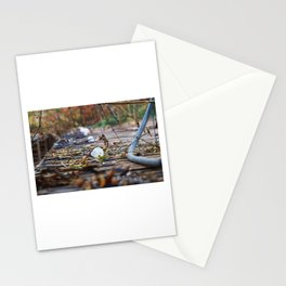 Overgrown Light Stationery Cards