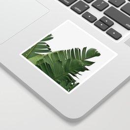 Minimal Banana Leaves Sticker