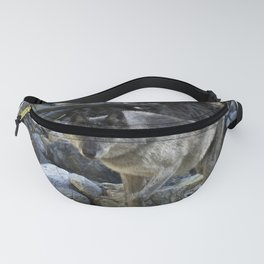 """""""Vision Quest""""  Wild Grey Wolf Fanny Pack"""